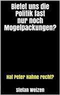 Bietet uns die Politik fast nur noch Mogelpackungen? - Stefan Weizen - E-Book