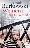 Weinen in der Dunkelheit - Ursula Burkowski - E-Book