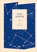 Księga zachwytów - Filip Springer - ebook