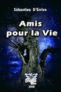 Amis pour la vie - Sébastien D'errico - E-Book