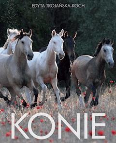 Konie - Edyta Trojańska-Koch - ebook