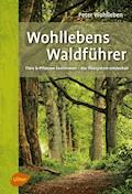 Wohllebens Waldführer - Peter Wohlleben - E-Book