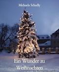 Ein Wunder zu Weihnachten - Michaela Schadly - E-Book