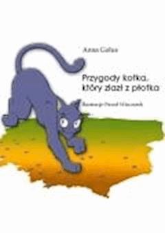 Przygody kotka, który zlazł z płotka - Anna Golus - ebook