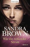 Wie ein reißender Strom - Sandra Brown - E-Book