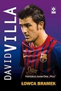 David Villa - Francisco Javier Díaz - ebook