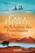 Im Schatten des Feuerbaums - Carla Federico - E-Book
