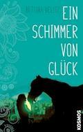 Ein Schimmer von Glück - Bettina Belitz - E-Book