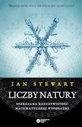 Liczby natury. Nierealna rzeczywistość matematycznej wyobraźni - Ian Stewart - ebook