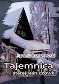 Tajemnica starej leśniczówki - Janusz Brzozowski - ebook