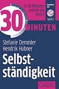 30 Minuten Selbstständigkeit - Stefanie Demmler - E-Book