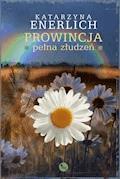 Prowincja pełna złudzeń - Katarzyna Enerlich - ebook