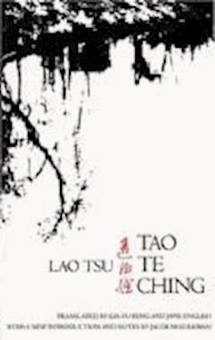 Tao Te Ching - Laozi - ebook