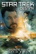 Star Trek - Destiny 3: Verlorene Seelen - David Mack - E-Book