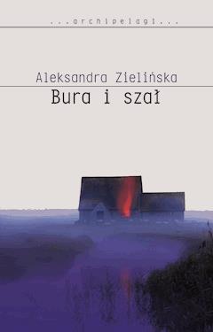 Bura i szał - Aleksandra Zielińska - ebook