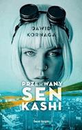 Przerwany sen Kashi - Dawid Kornaga - ebook