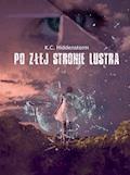 Po złej stronie lustra - K. C. Hiddenstorm - ebook
