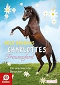 Charlottes Traumpferd 3: Ein unerwarteter Besucher - Nele Neuhaus - E-Book