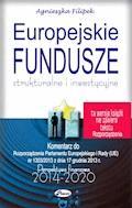 Europejskie Fundusze strukturalne i inwestycyjne - Agnieszka Filipek - ebook