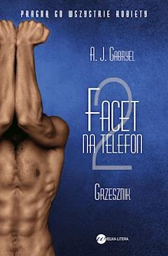 Facet na telefon 2 - A. J. Gabryel - ebook