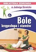 Bóle kręgosłupa i stawów - Jadwiga Górnicka - ebook