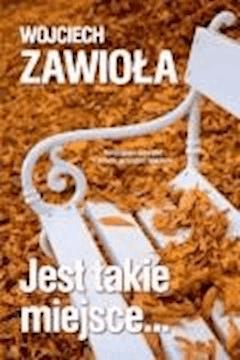 Jest takie miejsce - Wojciech Zawioła - ebook