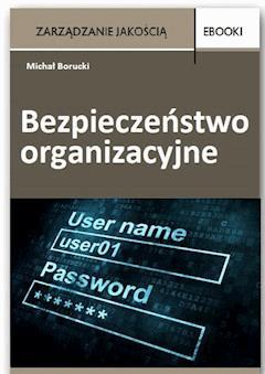 Bezpieczeństwo organizacyjne - Michał Borucki - ebook