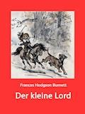 Der kleine Lord - Frances Hodgson Burnett - E-Book