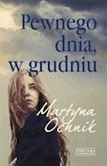 Pewnego dnia, w grudniu - Martyna Ochnik - ebook