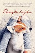 Przytulajka - Agnieszka Krawczyk, Agnieszka Lingas-Łoniewska - ebook