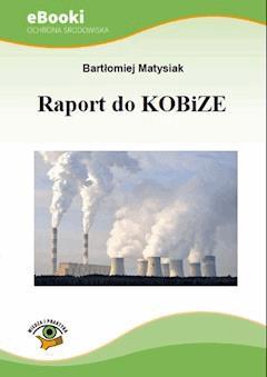 Raport do KOBiZE - Bartłomiej Matysiak - ebook