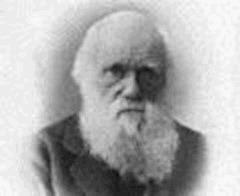 Observations géologiques sur les îles volcaniques - Charles Darwin - ebook