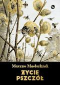 Życie pszczół - Maurice Maeterlink - ebook