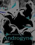 Androgyne - Stanisław Przybyszewski - ebook