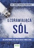 Uzdrawiająca sól. Jak spożywanie soli może ocalić Twoje życie - dr James DiNicolantonio - ebook