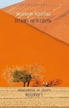 Strzały na Hillbrow - Wojciech Albiński - ebook