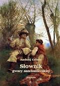 Słownik gwary sandomierskiej - red. Andrzej Cebula - ebook