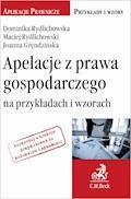 Apelacje z prawa gospodarczego na przykładach i wzorach - Dominika Rydlichowska, Maciej Rydlichowski - ebook