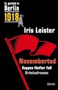 Novembertod - Iris Leister - E-Book