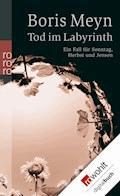 Tod im Labyrinth - Boris Meyn - E-Book