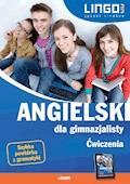 Angielski dla gimnazjalisty. Ćwiczenia. eBook - Agata Mioduszewska - ebook
