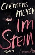 Im Stein - Clemens Meyer - E-Book