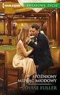 Spóźniony miesiąc miodowy - Louise Fuller - ebook