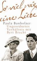 So viel wie eine Liebe - Paula Banholzer - E-Book
