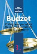 Budżet - praktyczny poradnik dla małych przedsiębiorstw - Danuta Młodzikowska, Björn Lundén - ebook