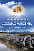 Ścigając marzenia. W pogoni za złotem - Andrzej Śliwa - ebook