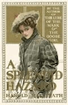 A Splendid Hazard - Harold MacGrath - ebook