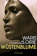Wüstenblume - Waris Dirie - E-Book
