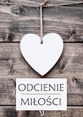 Odcienie miłości - Praca zbiorowa - ebook