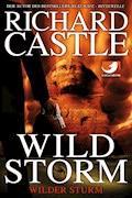 Derrick Storm 2: Wild Storm - Wilder Sturm - Richard Castle - E-Book